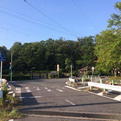 ハムヲさんの朝ラン日記  (2014/7/26)_a0260034_826473.jpg