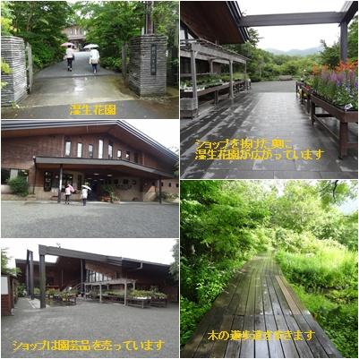 箱根の旅 二日目 富士屋ホテル&美術館巡り_a0084343_10513298.jpg