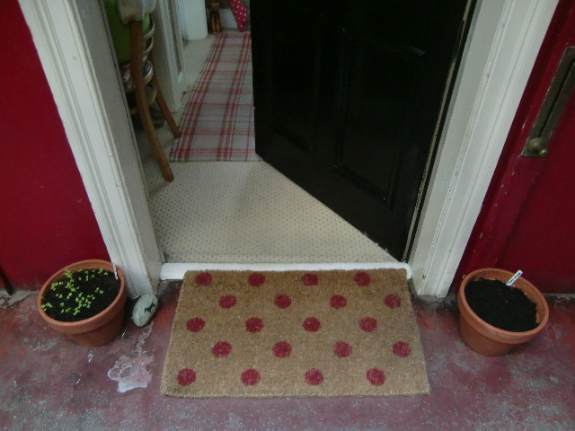 初めての 我が玄関 を飾りたい!_c0027188_3325757.jpg