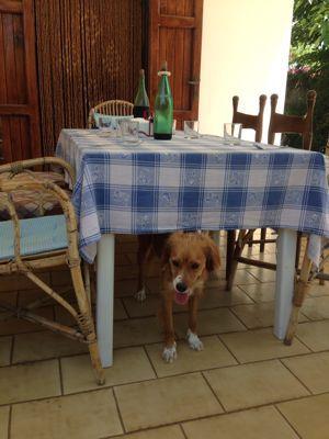 プーリアの食卓_f0106597_2594238.jpg