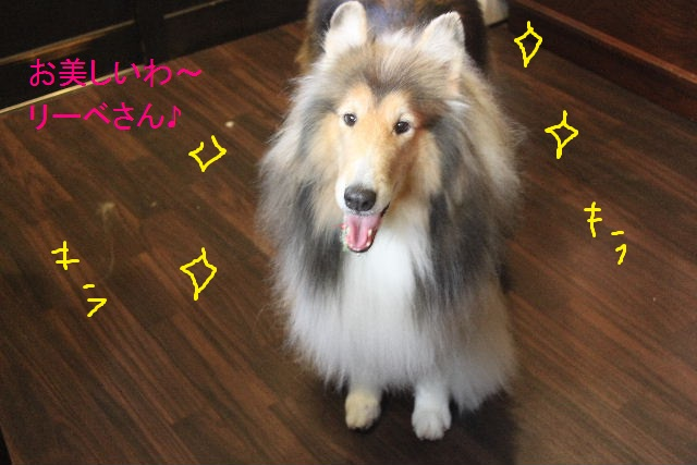 お誕生日!!_b0130018_85862.jpg