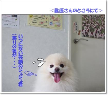 b0167519_2215248.jpg