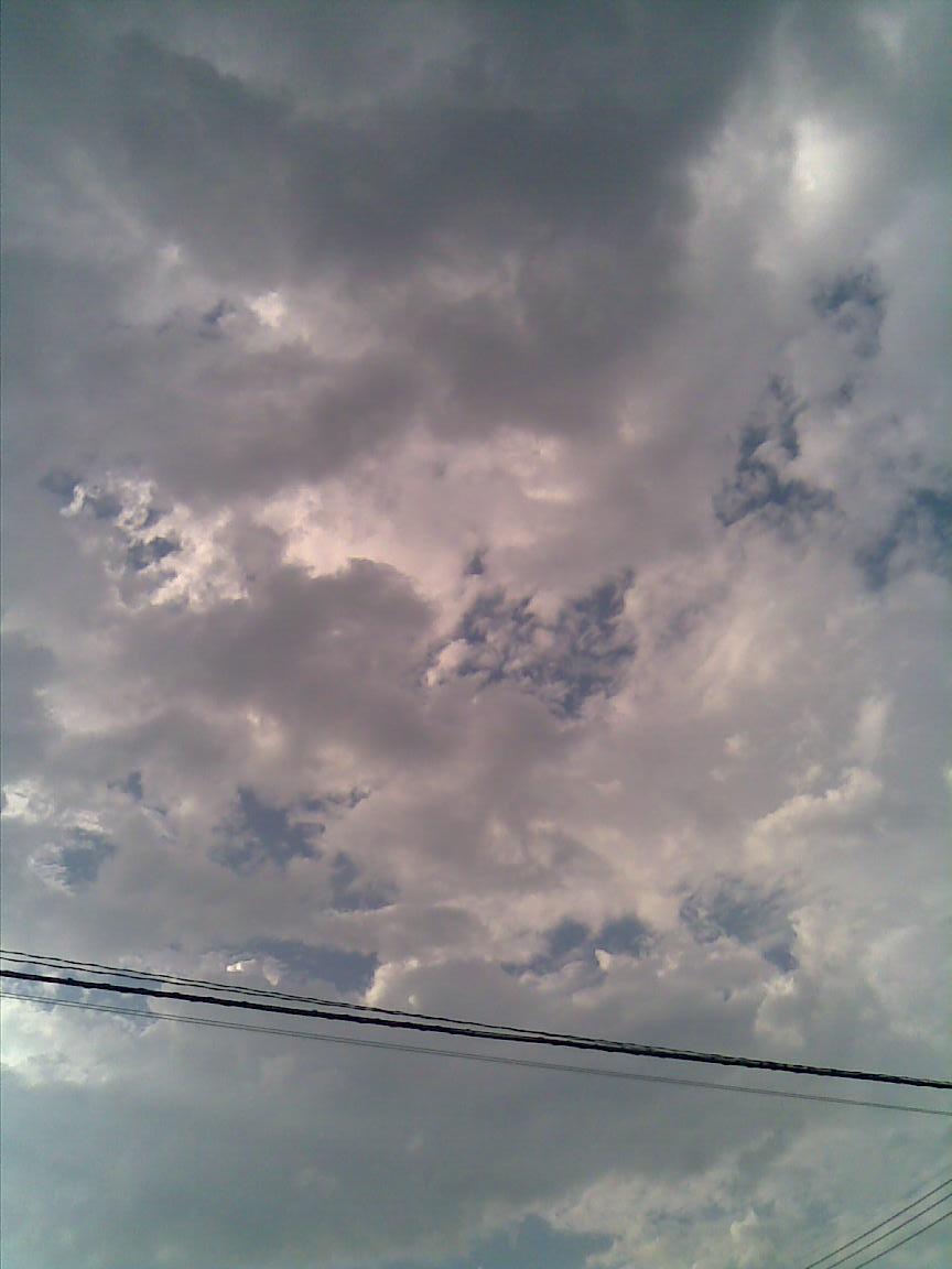 猛暑だったが夕方は定番の雷雨_d0061678_2311611.jpg