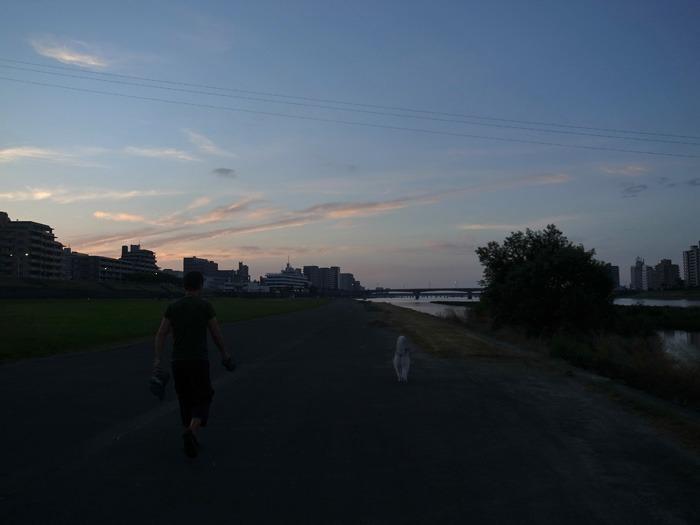 朝から暑い! 短めさんぽ (*^_^*)_c0049299_15474214.jpg
