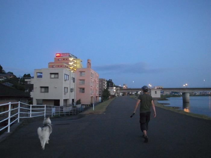 朝から暑い! 短めさんぽ (*^_^*)_c0049299_15495372.jpg