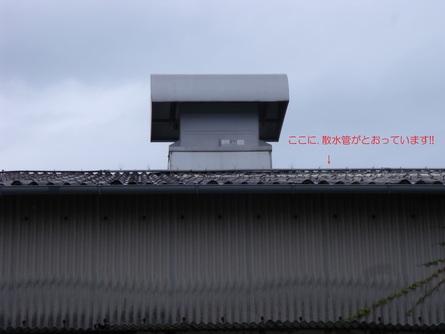 b0186205_9591772.jpg