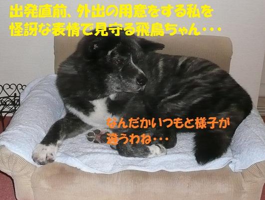 f0121712_15484751.jpg