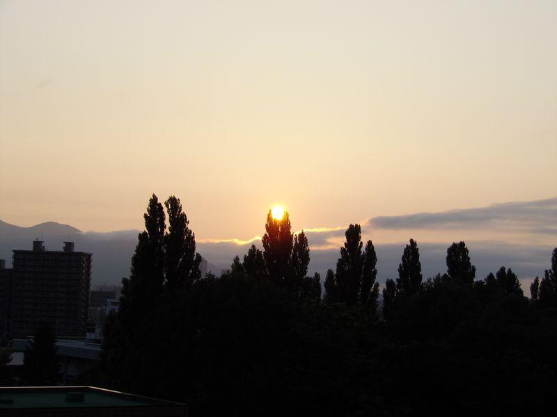 ポプラ並木の御神鏡_c0025115_185556100.jpg