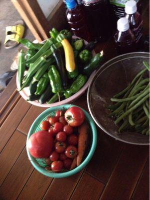 お野菜収穫。_b0135325_6581871.jpg