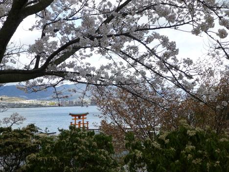 Walking tour in spring_a0255452_152023.jpg