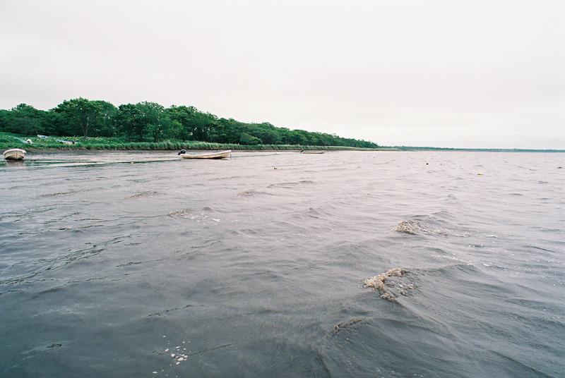 風の、蓮の、湖。_c0084666_22463759.jpg