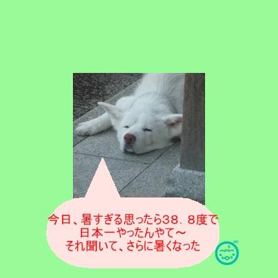 a0187087_17434982.jpg
