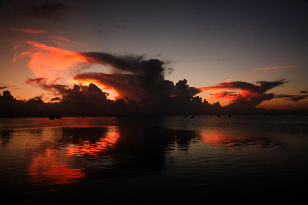 島を離れて_e0004009_24766.jpg