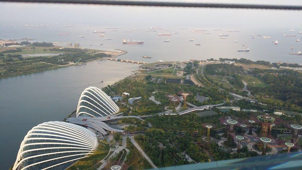 シンガポール大会では、皆様に大変お世話に成り有り難うございました。_c0186691_0333544.jpg