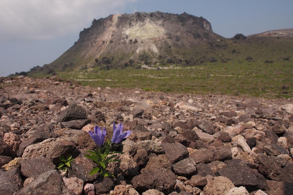 樽前山、7月29日-速報版-_f0138096_1652026.jpg