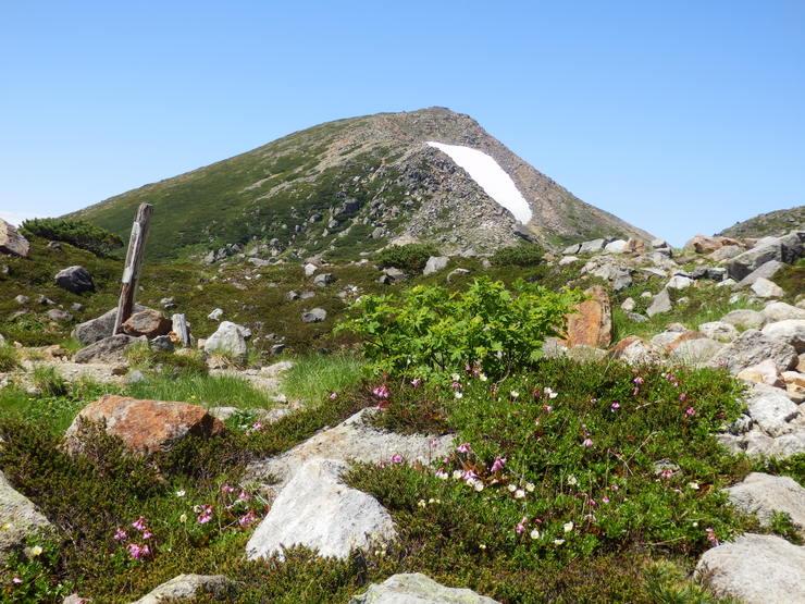霊峰 白山その(2)_f0219710_13432837.jpg
