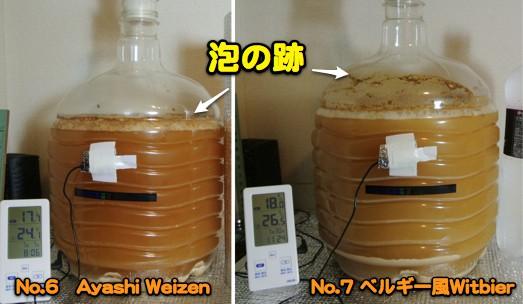 発酵二日目_c0063348_1955110.jpg