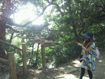 源氏山公園周辺_b0211757_1212476.jpg
