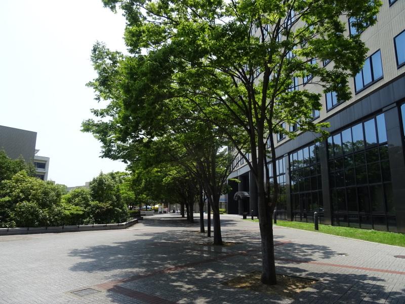 和歌山大学システム工学部の特別聴講生になりました・・・?_c0108460_00514398.jpg