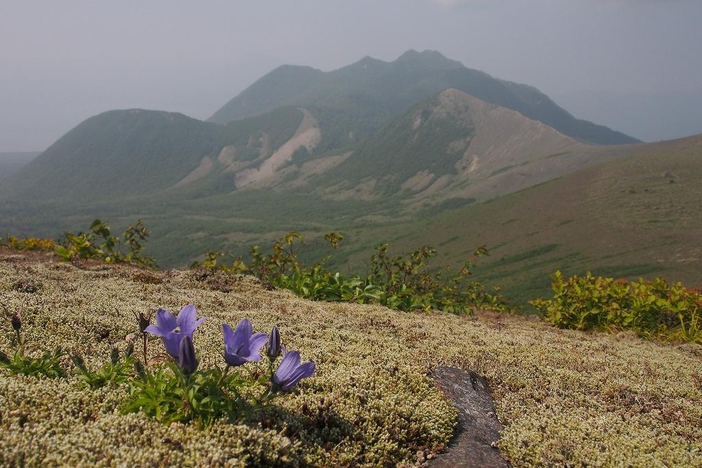 樽前山、7月29日_f0138096_15575815.jpg
