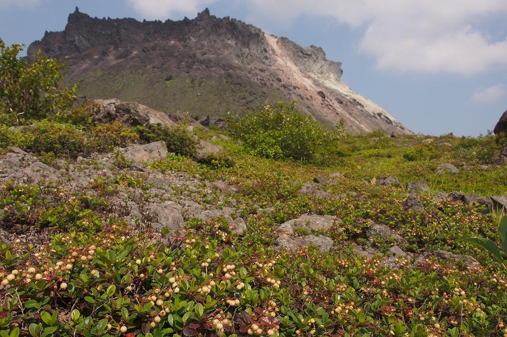 樽前山、7月29日_f0138096_15581869.jpg