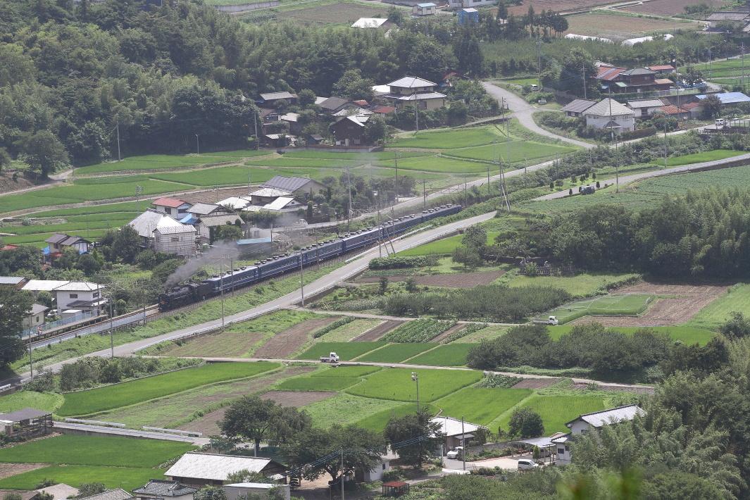 夏の緑の田んぼ道 - 2013年・上越線 -  _b0190710_2245412.jpg