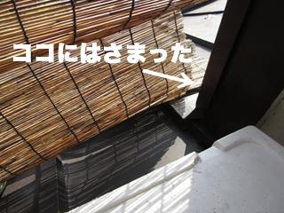 c0211810_103126.jpg