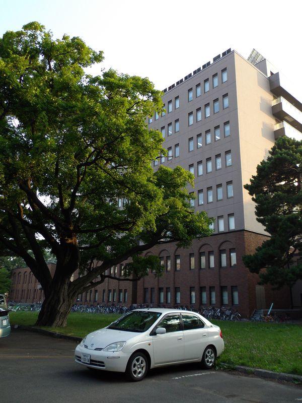 最高気温32.4℃の札幌_c0025115_0122675.jpg