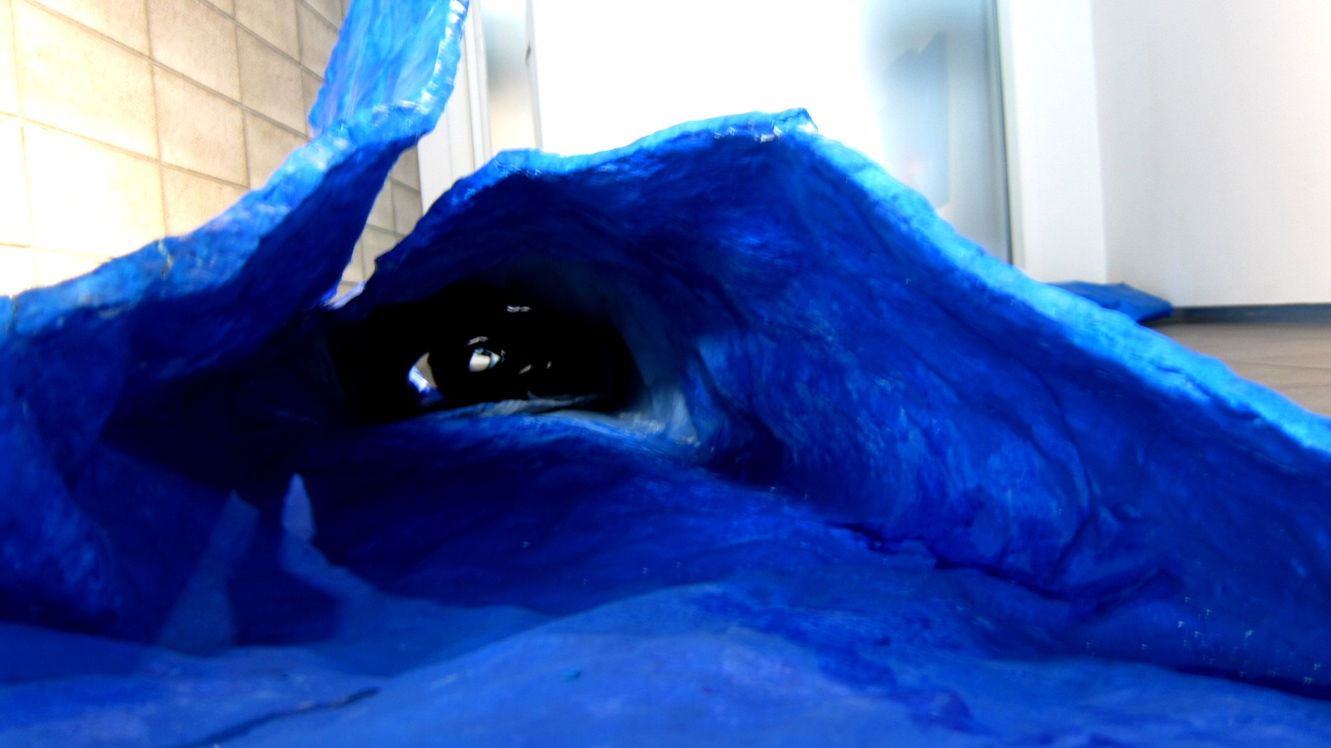 2434) 「後藤和子展 『青の災禍』」 創 7月30日(水)~8月10日(日)_f0126829_21493893.jpg