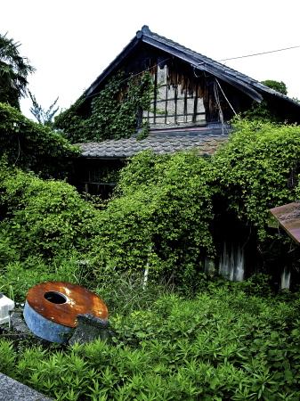 豊島❹_f0315034_14292253.jpg
