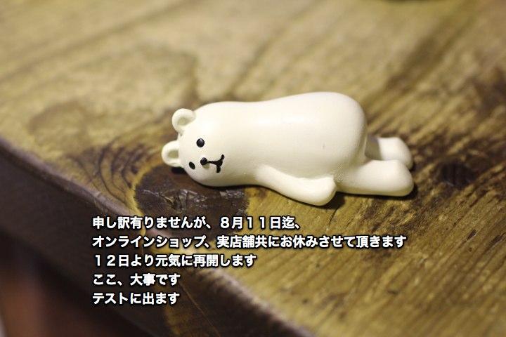 f0159943_1757238.jpg