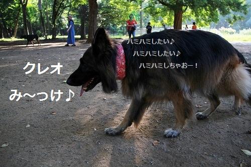 a0254949_111037.jpg