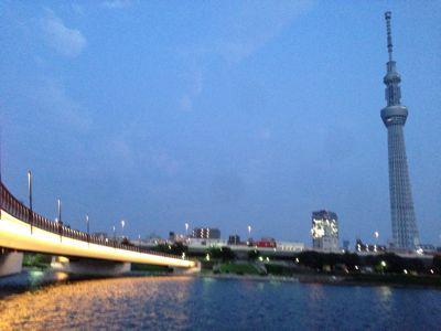 with dog  隅田川テラスからスカイツリーへ♪_a0165160_5441064.jpg