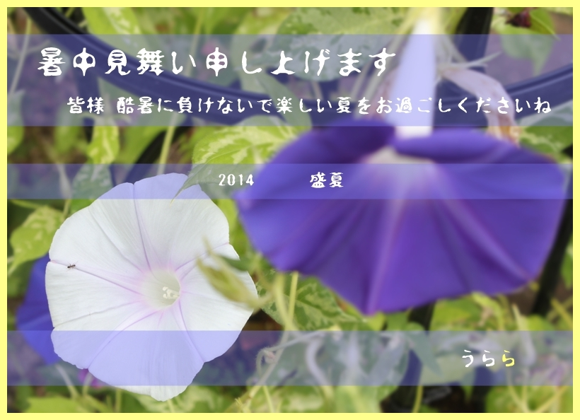f0165677_21031847.jpg