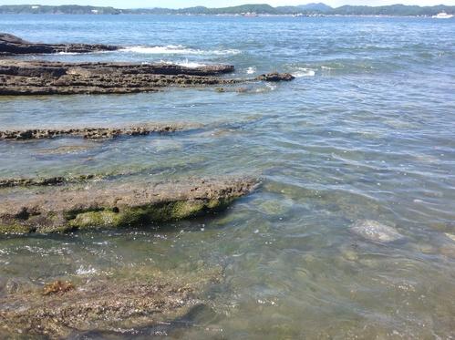 海水浴に行きました‼︎千葉館山‼︎_e0057018_784729.jpg