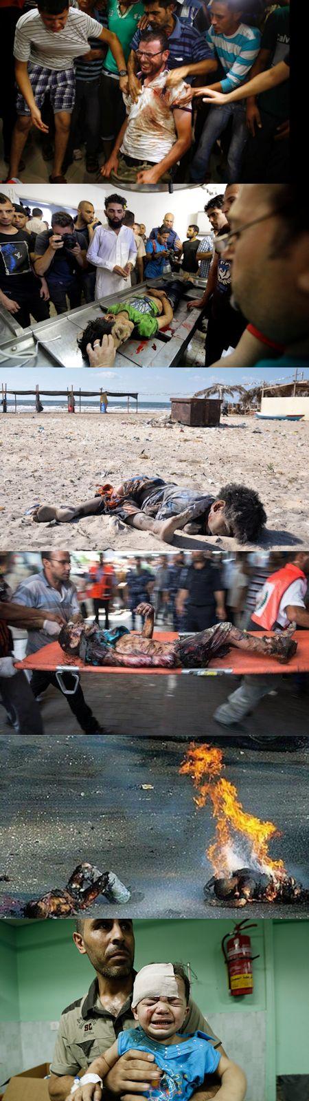 ガザ虐殺に思うこと - イスラエルの戦争の方法、目的、意味_c0315619_17163264.jpg