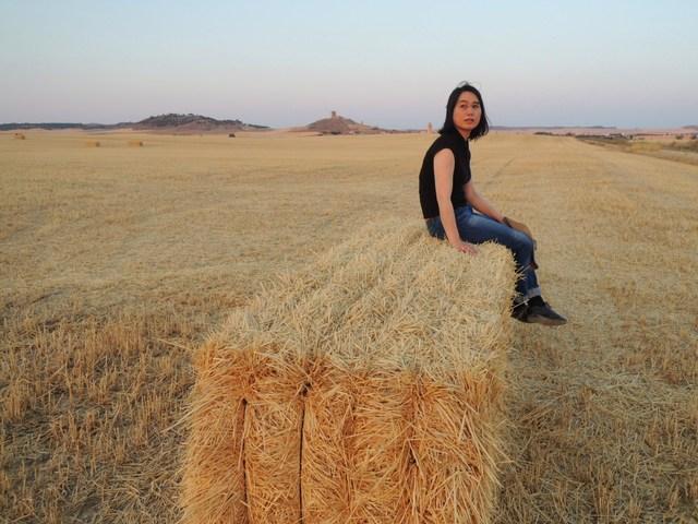 麦畑と渡り鳥_c0213220_5455264.jpg