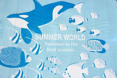 Summer is the best season_f0145483_14101460.jpg