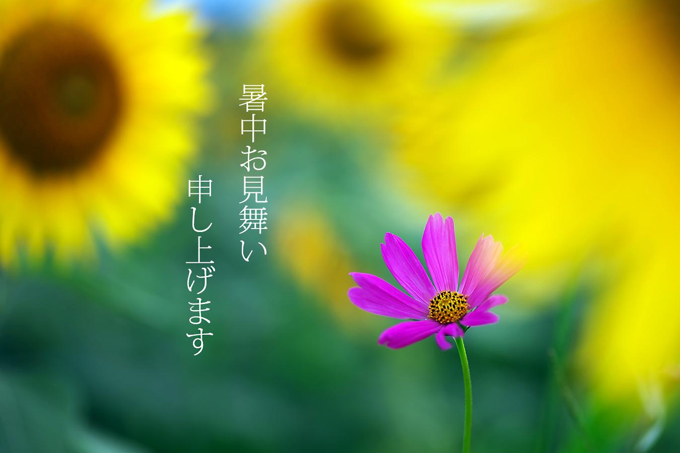 c0115616_6123634.jpg