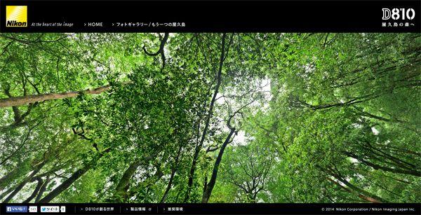 ギガパノウォーク_e0069646_19311950.jpg