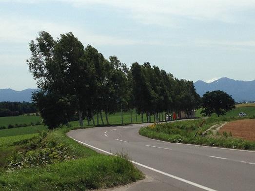 2014 北海道 HOKKAIDER~4 - 夫婦ぅタンデムツー_c0261447_23424158.jpg