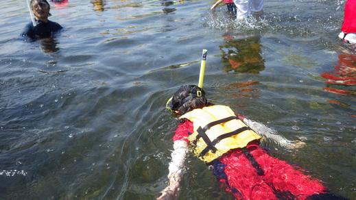 8月2日のきぬたまあそび村 多摩川で川遊び_c0120851_233941.jpg