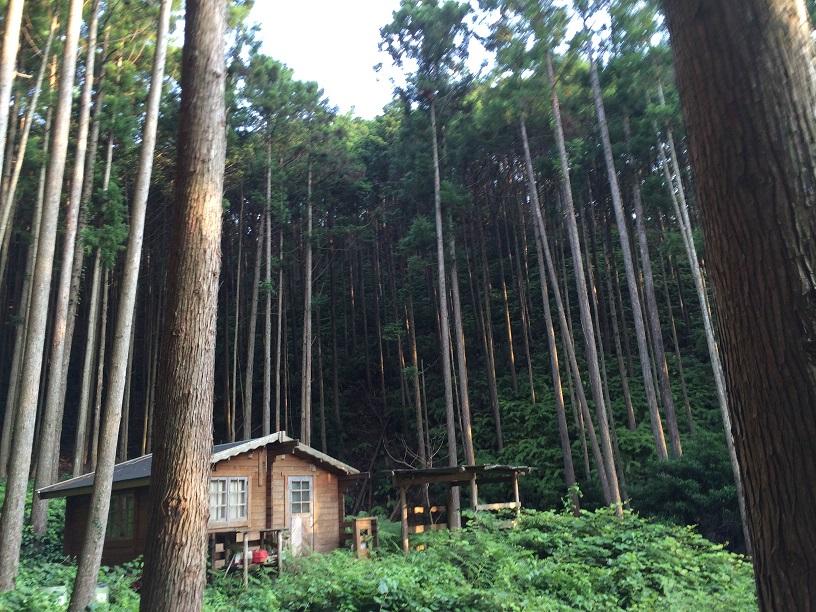 平成廿六年 七月廿二~廿五日 熊野周遊 於和歌山縣某町及び三重縣某山_a0165993_0333911.jpg