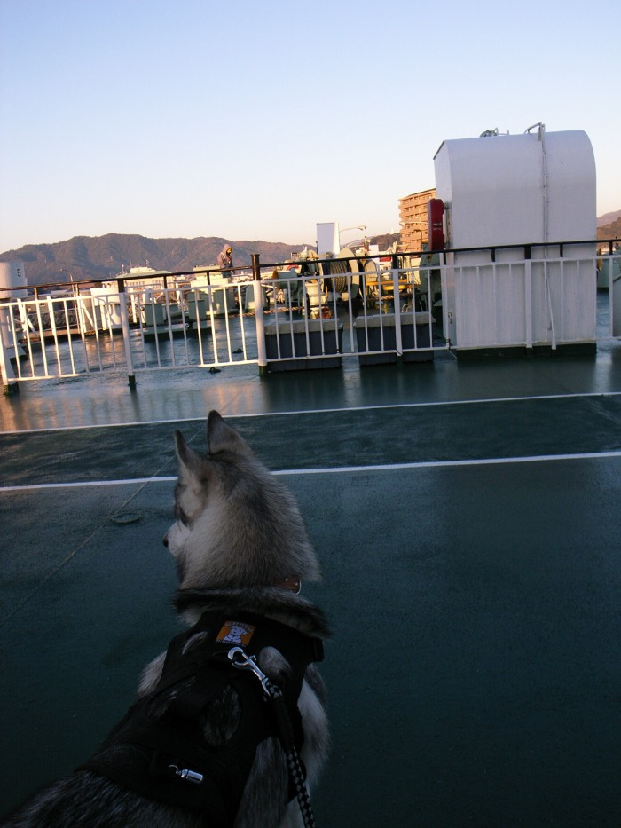 Shikoku Pilgrimage with Hana2  Dec.25th 2005_c0049299_13504965.jpg