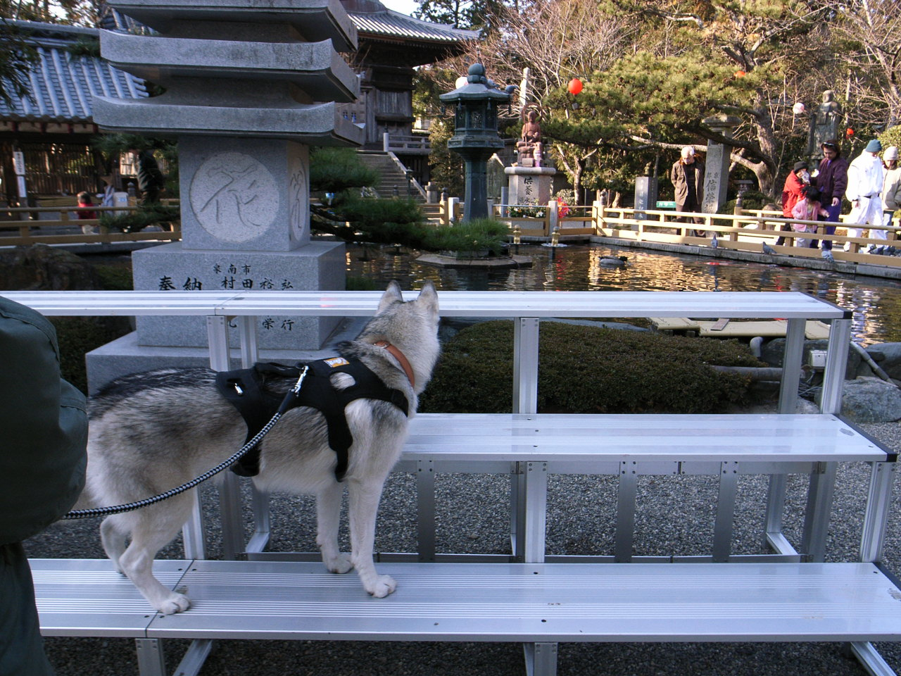 Shikoku Pilgrimage with Hana2  Dec.25th 2005_c0049299_141319.jpg
