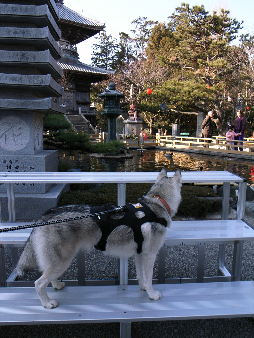 Shikoku Pilgrimage with Hana2  Dec.25th 2005_c0049299_1414362.jpg