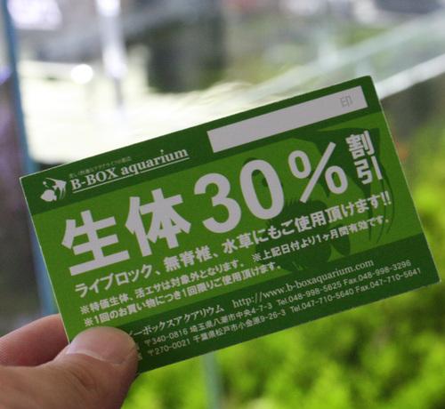 50%チケットまだ出てないよー_c0165800_20392593.jpg