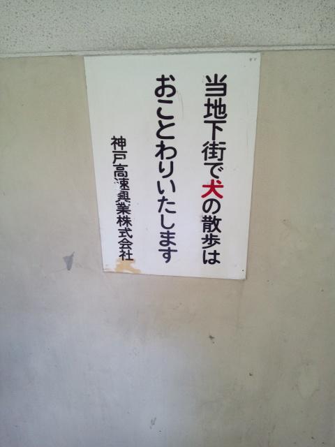 神戸の地下から_c0001670_17563559.jpg