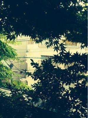 雨、雨_e0330790_10271785.jpg