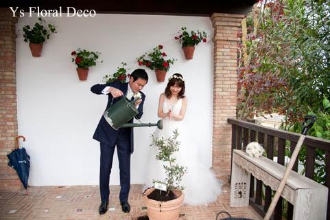 華奢な白い花冠 スペインへ_b0113510_203086.jpg